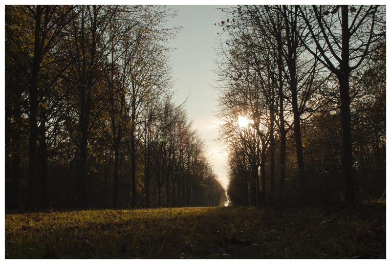 perspective et lumière