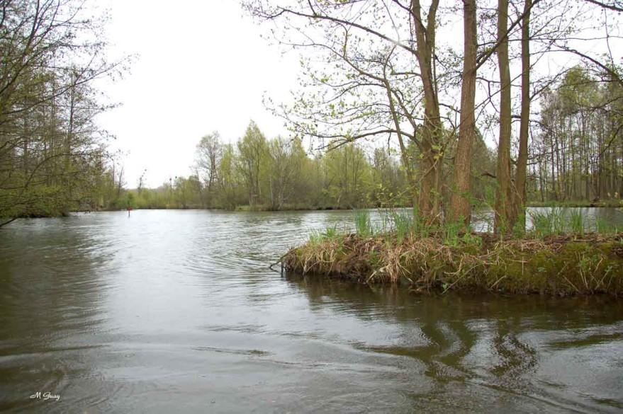 barque-etangs-8650.jpg