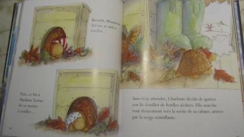 """""""La magie de Noël"""" Piccolia"""