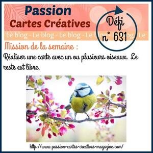 Passion Cartes Créatives#631 !