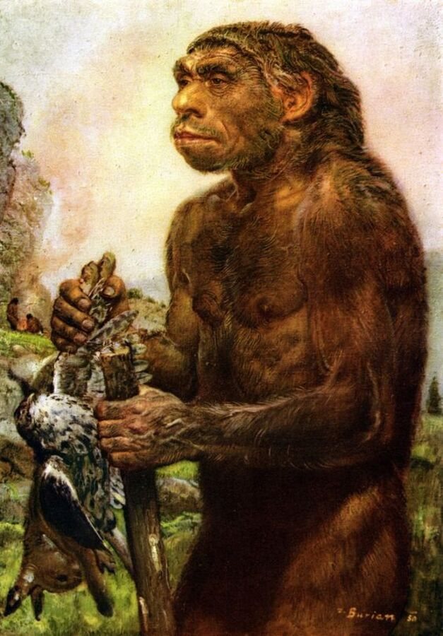 PROTEINES MON AMOUR... (Neanderthal)