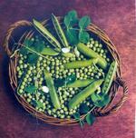 Le top des légumes de printemps