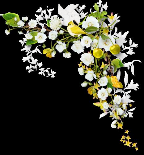 Ornements Floraux Série 20