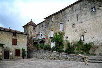 CES EAUX VILLAGES DE L'ARIEGE CAMON ET LA FETE DES ROSES EN MAI