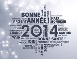Bonne année 2014!!!!