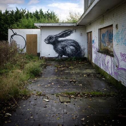 10 - Des histoires de lapins de rues
