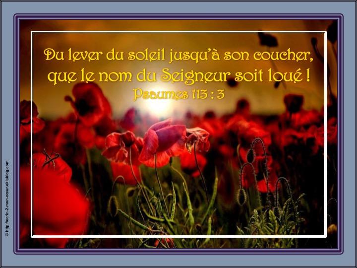 Que le nom du Seigneur soit loué - Psaumes 113 : 3