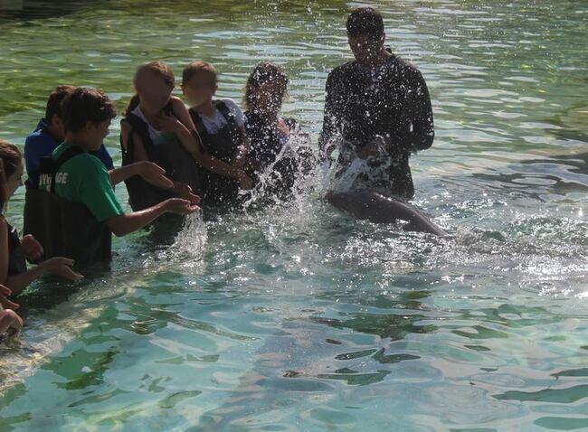 Chez Khanel3-octobre dans l'eau