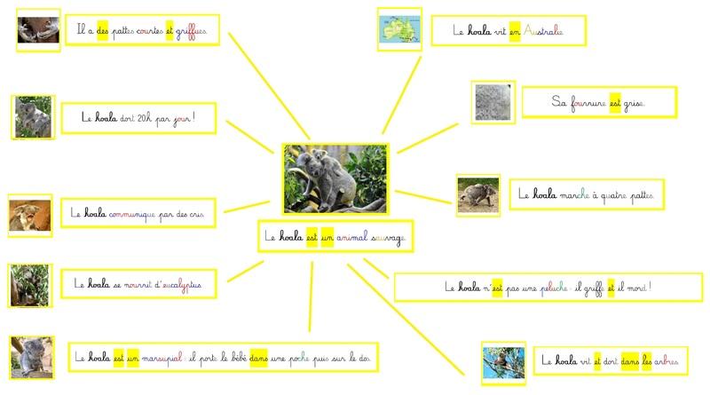 Histoires courtes autour des animaux