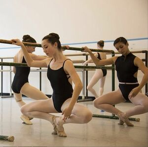 dance ballet at the barre grand plié