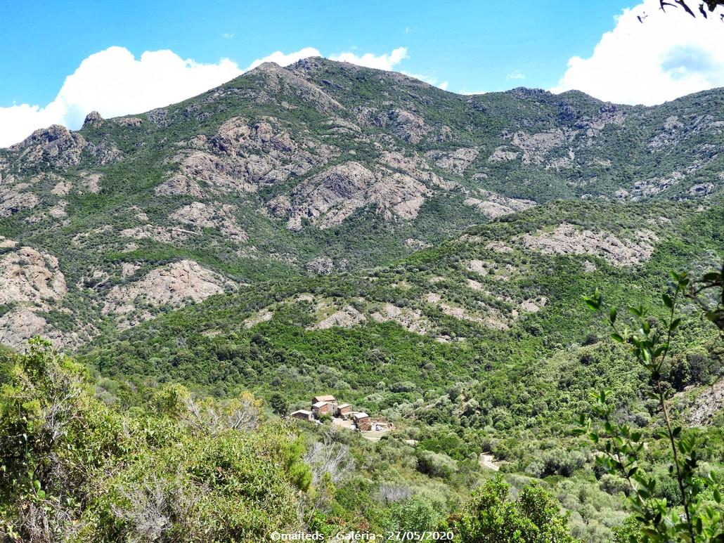 Sur le sentier des crêtes - Galéria - hameau de Calca dans le maquis