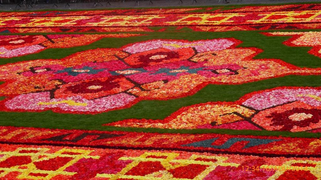 La place de Bruxelles et son tapis de bégonias.