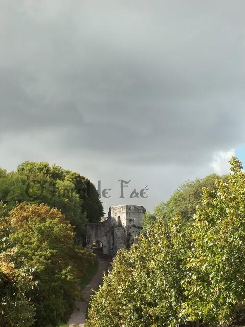 La plus belle photographie du Trou au Chat (Provins) que j'ai faites !