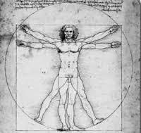 """Résultat de recherche d'images pour """"corps humain vinci"""""""