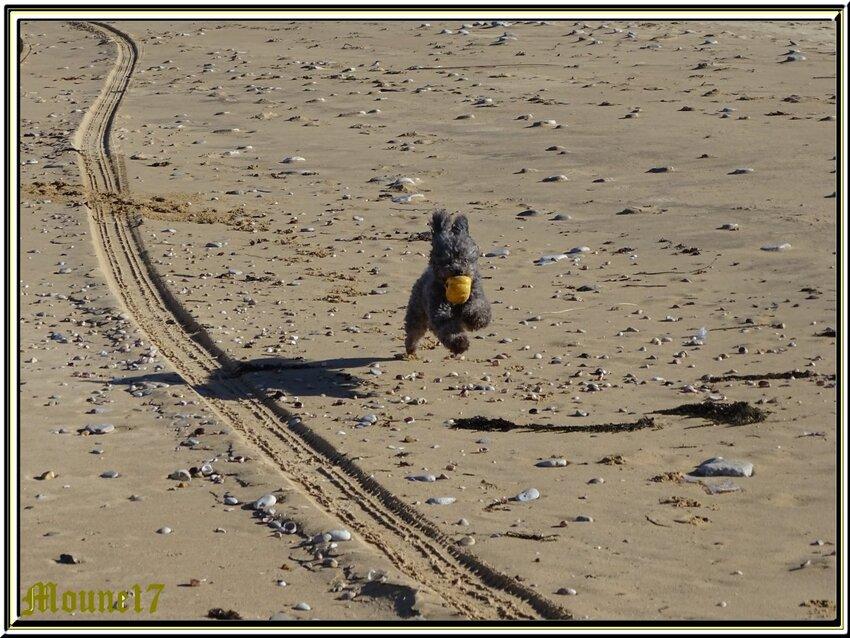 Balade à la plage de Boyard