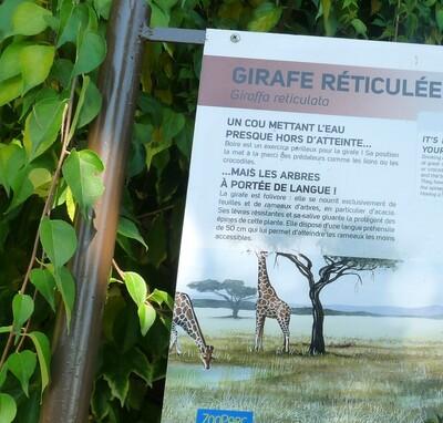 Balade en Touraine