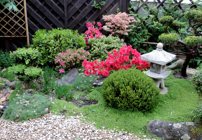 petit jardin japonais photo images pictures to pin on pinterest
