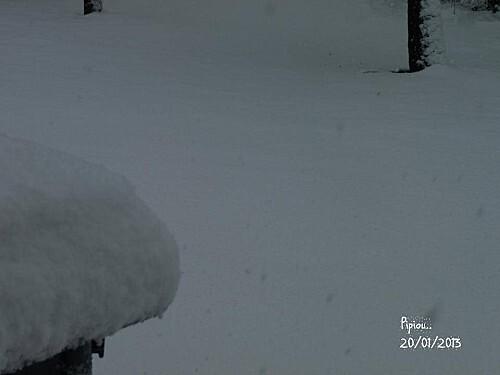 neige-20-janv-2013--22-.jpg