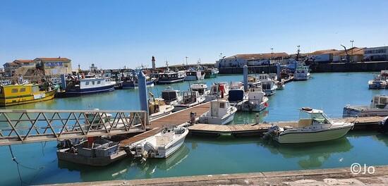 Port de pêche La Cotinière
