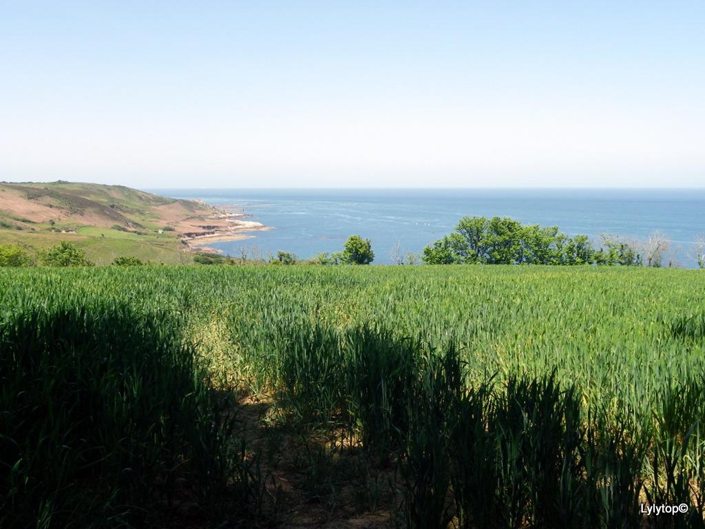 Du côté de la baie de Quervière
