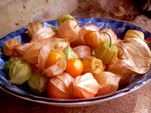 Fruitiers...