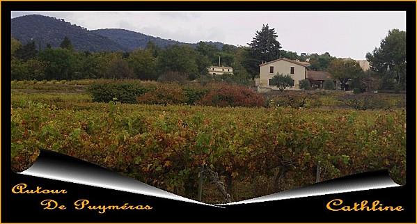 Automne--24-octobre-2011-057.JPG