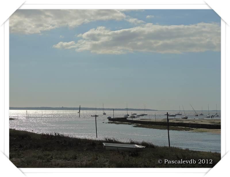Le sentier du littoral entre Lanton et Taussat - 9/10