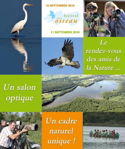 Festival de l'oiseau, à Virelles (B)