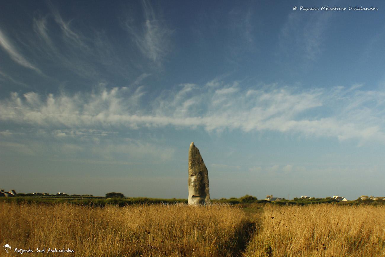 Menhir de Cam-Louis