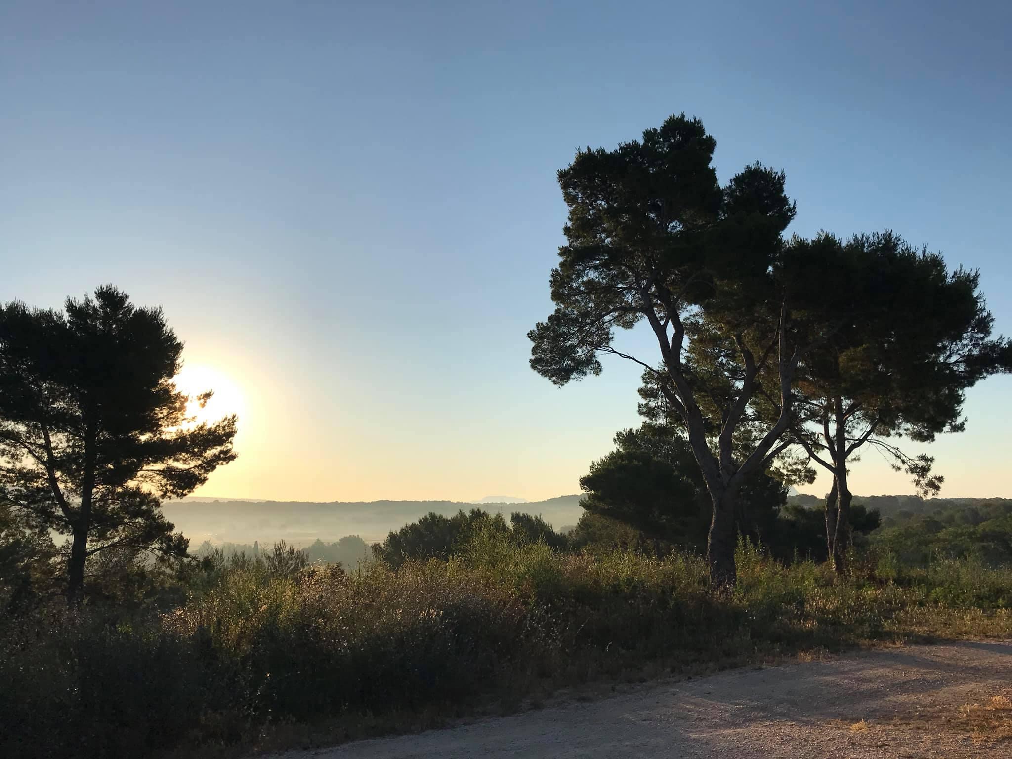 L'image contient peut-être: ciel, arbre, plein air et nature
