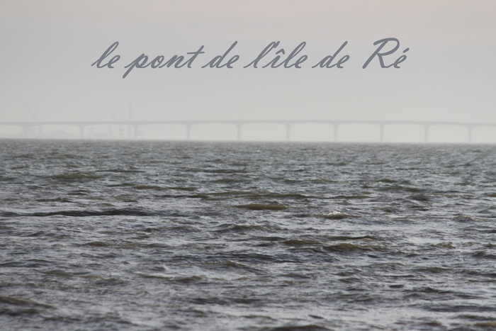BAIE DE L'AIGUILLON (17 et 85)