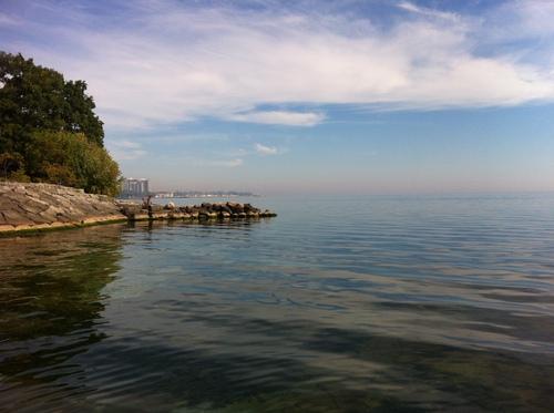 Quatre saisons à Bronte harbour