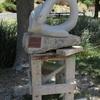 Pollieu- Aqualys de DESCA sculpteur