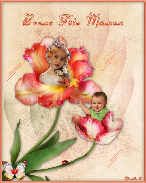 """Tulipes """"Surprise"""" pour la Fête des Mères"""