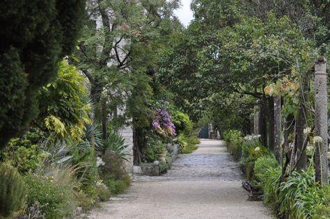 https://i.pinimg.com/474x/97/73/df/9773df0c8919cbd3c4d07dc24ada93cc--dalmatia-croatia-formal-gardens.jpg