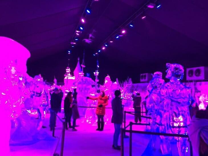 Sculptures de glace à Bruges.