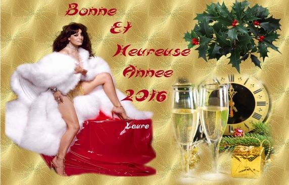 Bonne Année 2016 à vous tous et toutes je vous embrasse