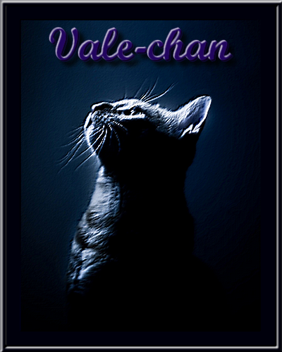 concours Vale chan (chat)