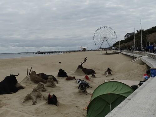 Un zoo dans le sable...