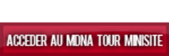 Access the MDNA Tour Mini-website