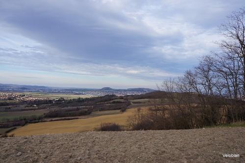 Balade sur les berges de l'Allier