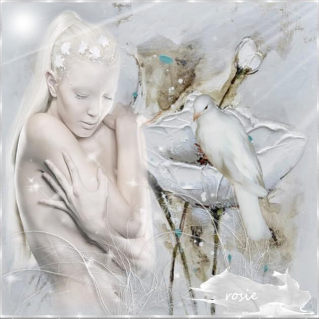 blanche et la colombe