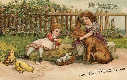 Cartes postales et lapin