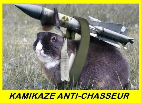 kamikaze anti chasseur
