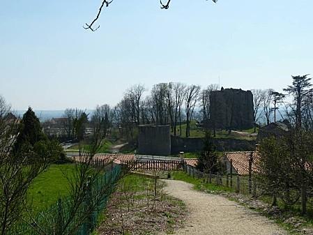 Château de Pouzauges (6)