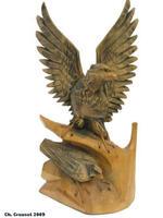 Collectionneur d'aigles