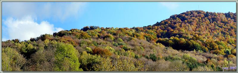 Le Picon : couleurs d'automne entre Lartigau et Milhas - 31