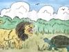 5-tortoise