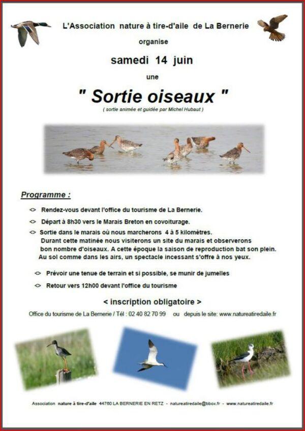Balade dans le marais breton