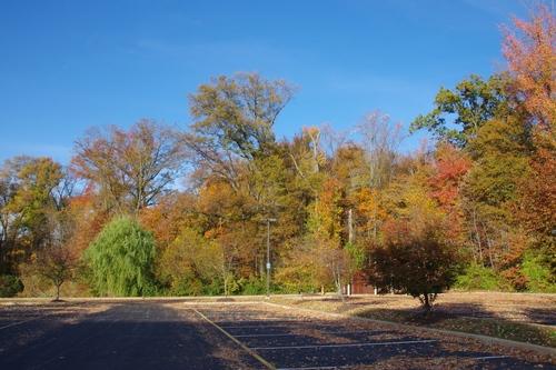 L'automne chez les Amish